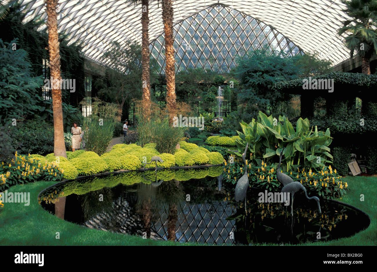 Botanischer garten halle halle im inneren teich pflanzen gew chshaus longwood g rten wissen - Gewachshaus garten ...