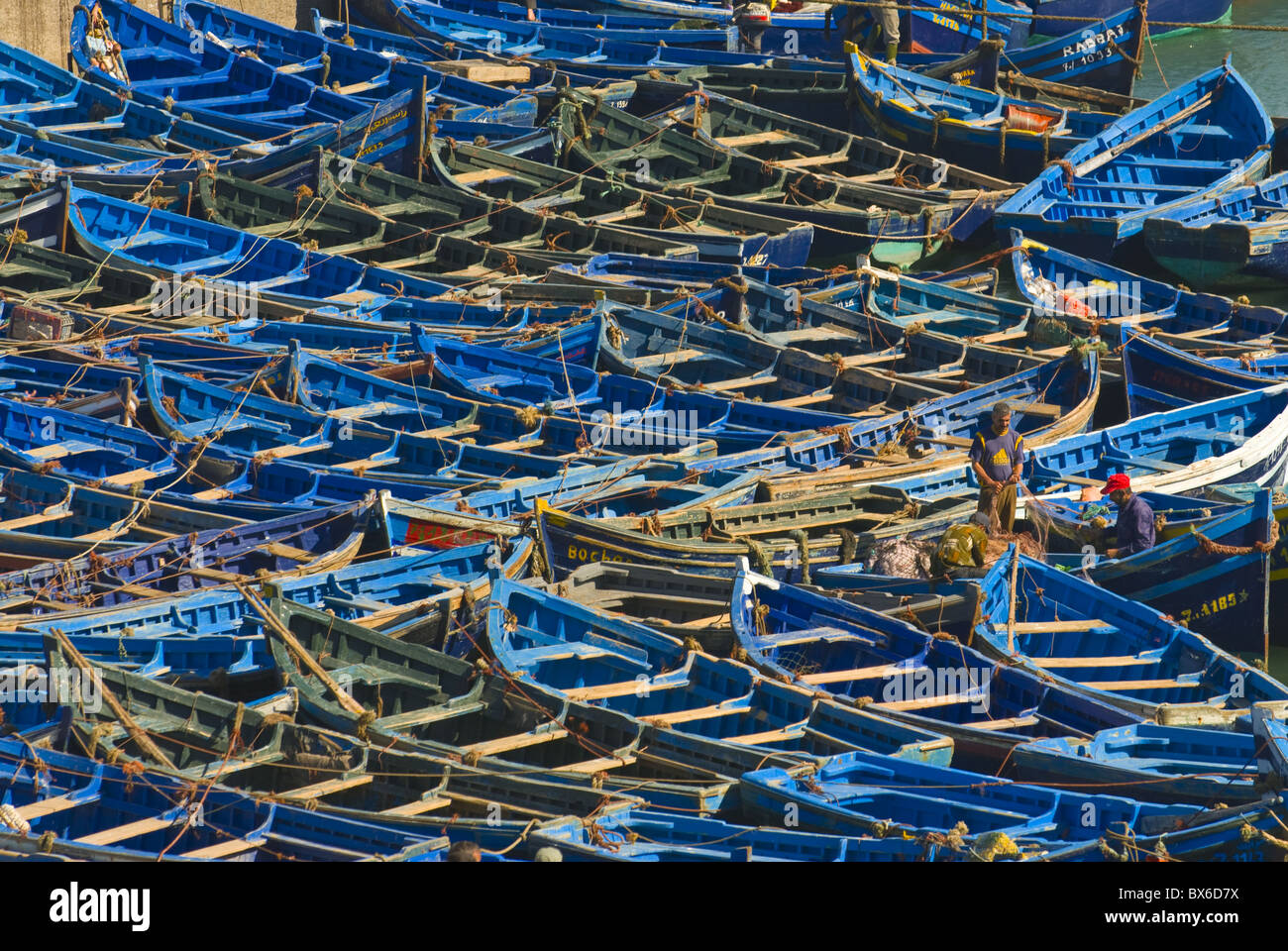 Angelboote/Fischerboote in der Küstenstadt Essaouira, Marokko, Nordafrika, Afrika Stockbild
