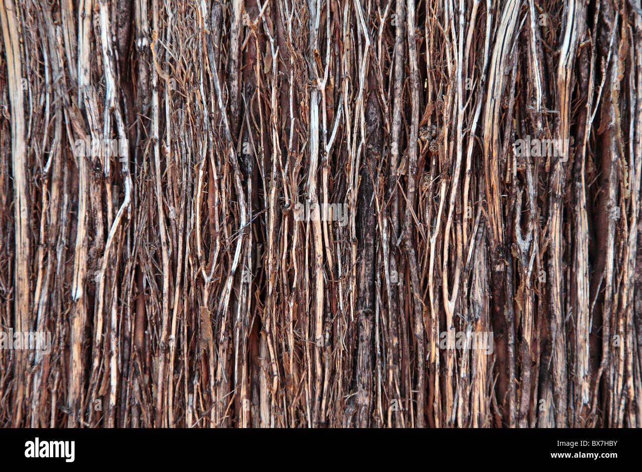 Fence Twigs Stockfotos & Fence Twigs Bilder - Alamy