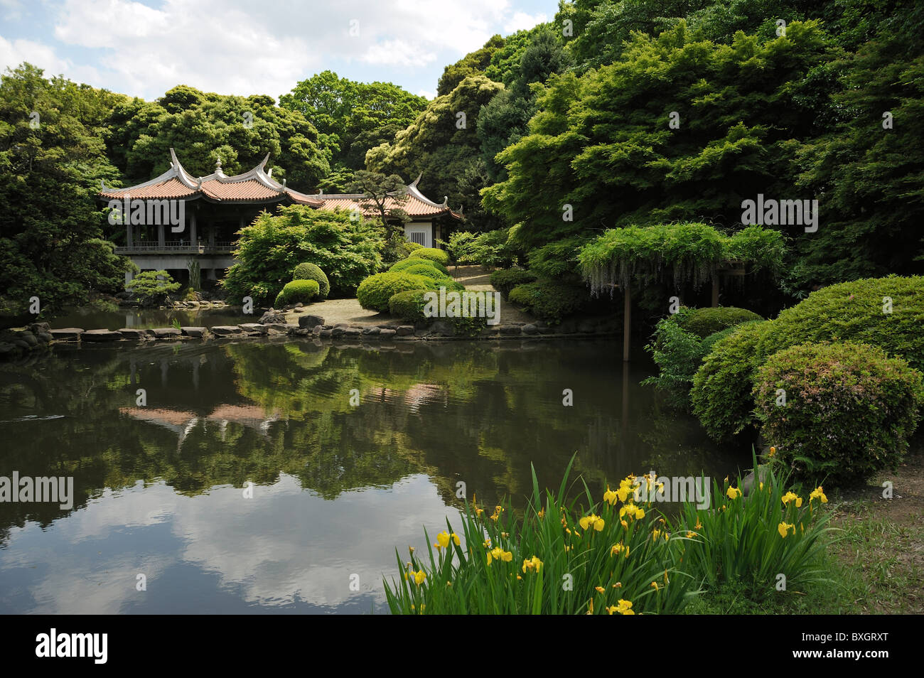 traditionelle japanische teehaus im park shinjuku tokyo japan stockfoto bild 33561440 alamy. Black Bedroom Furniture Sets. Home Design Ideas