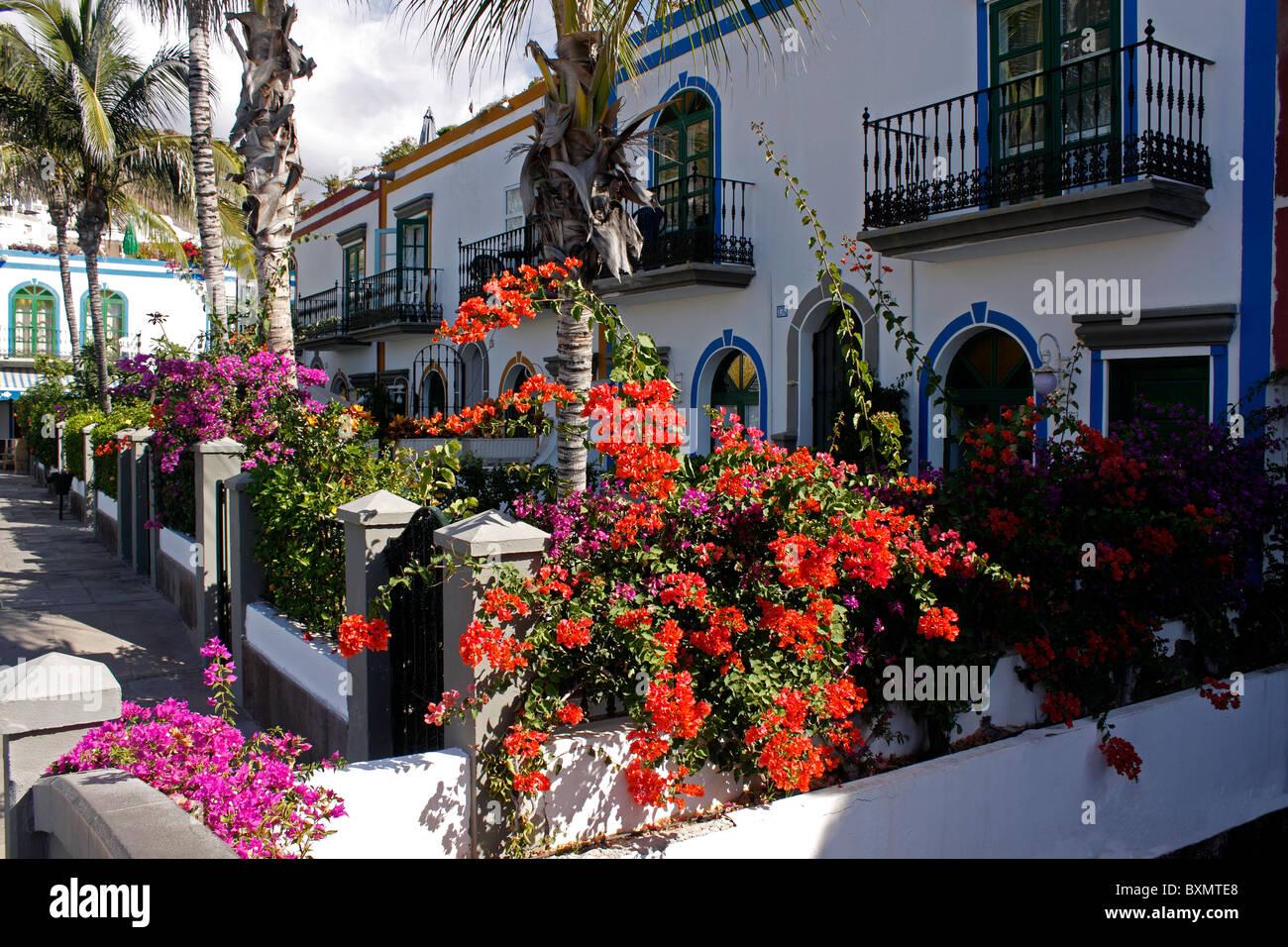 BUNTEN traditionellen kanarischen Häuser in PUERTO de MOGAN auf der Kanarischen Insel GRAN CANARIA. EUROPA. Stockfoto