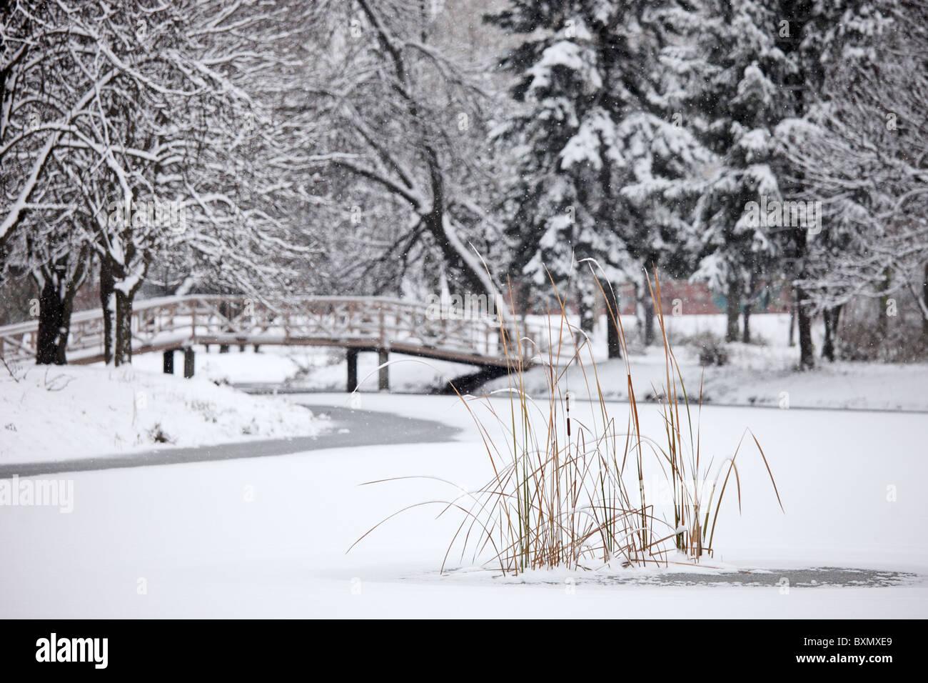 Ein Winter-Szene aus dem gefrorenen See im Stadtpark Skopje Stockbild