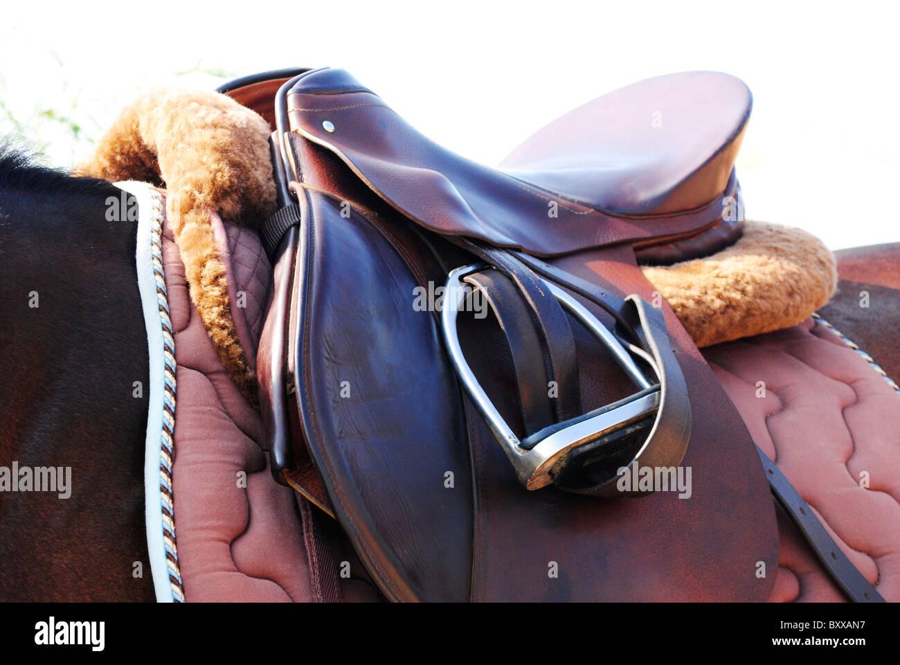Pferdesattel und Zaumzeug Stockbild