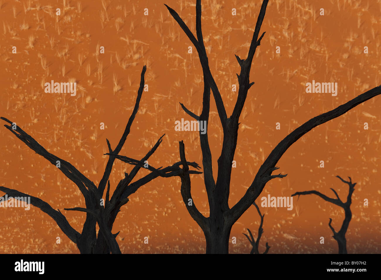 Tote Bäume in trockenem Ton zu schwenken, Dead Vlei Soussusvlei, Namibia, Afrika Stockbild
