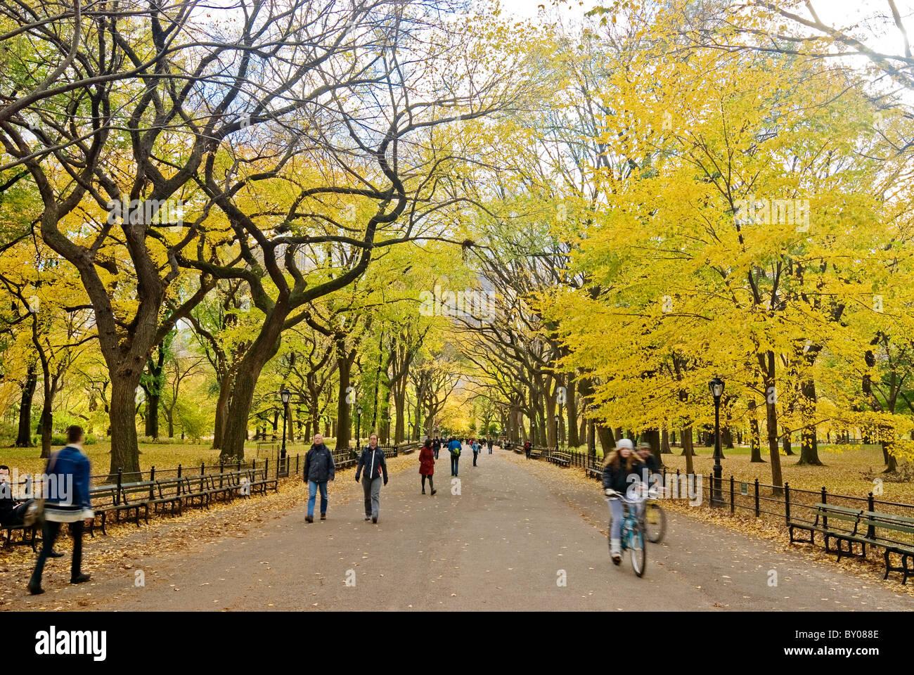 Menschen genießen die Mall im Central Park im Herbst, New York City. Stockbild