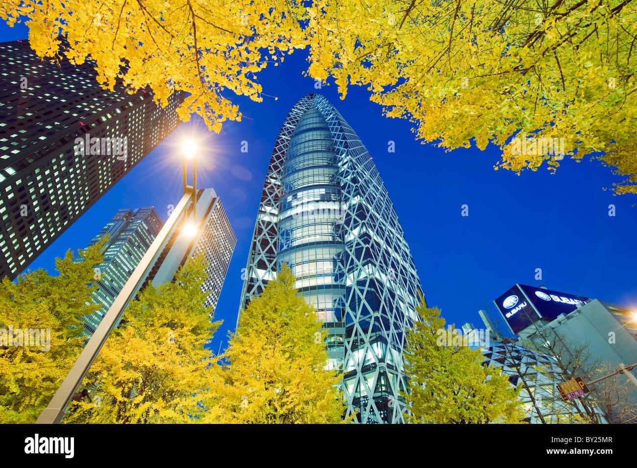 Asien, Japan, Tokio, Shinjuku, Tokyo Mode Gakuen Cocoon Tower Design Schulgebäude, gelbe Ginkgo-Blätter Stockbild