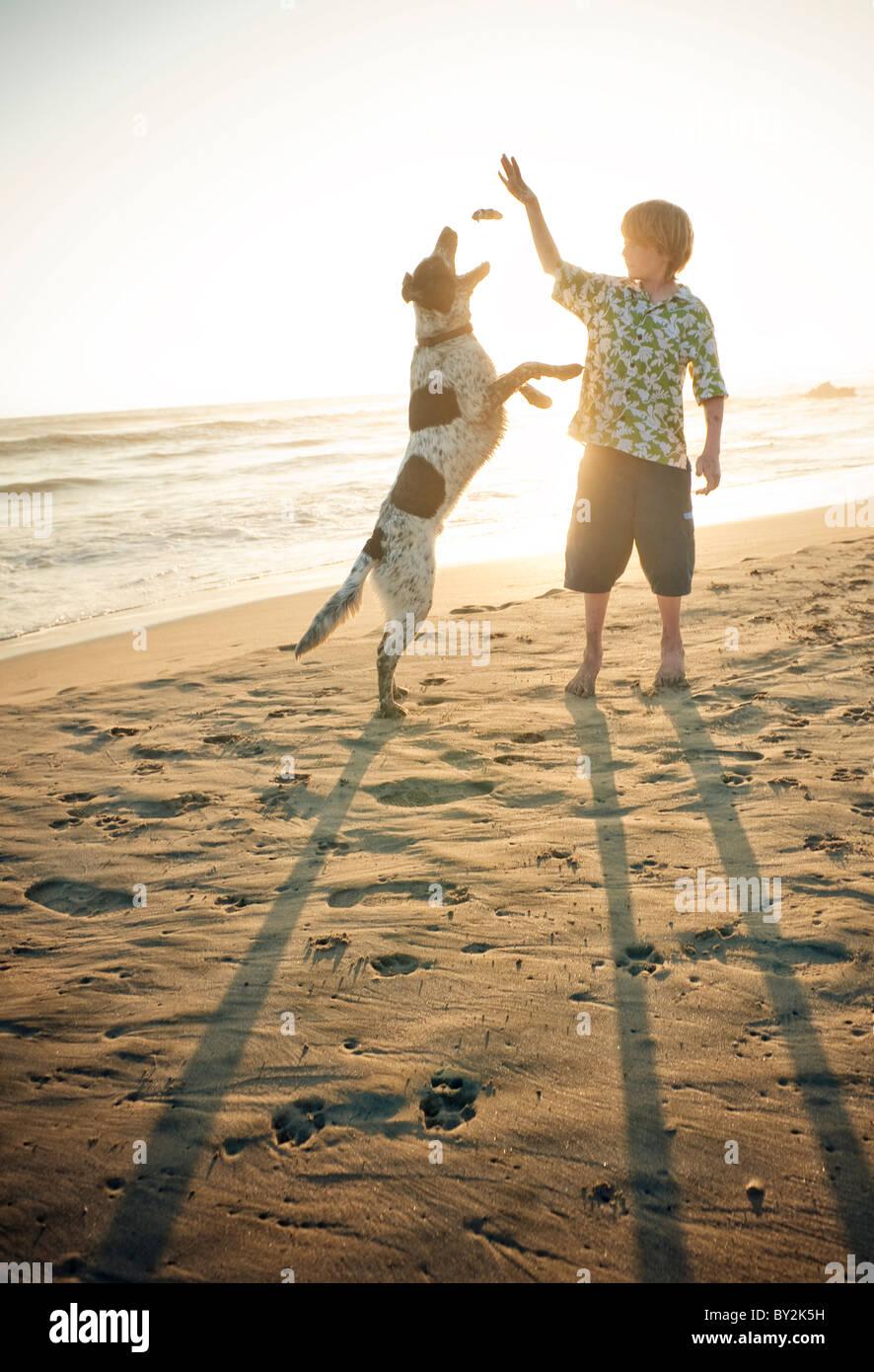 Ein kleiner Junge spielt mit seinem Hund an einem Strand in Mexiko. Stockbild