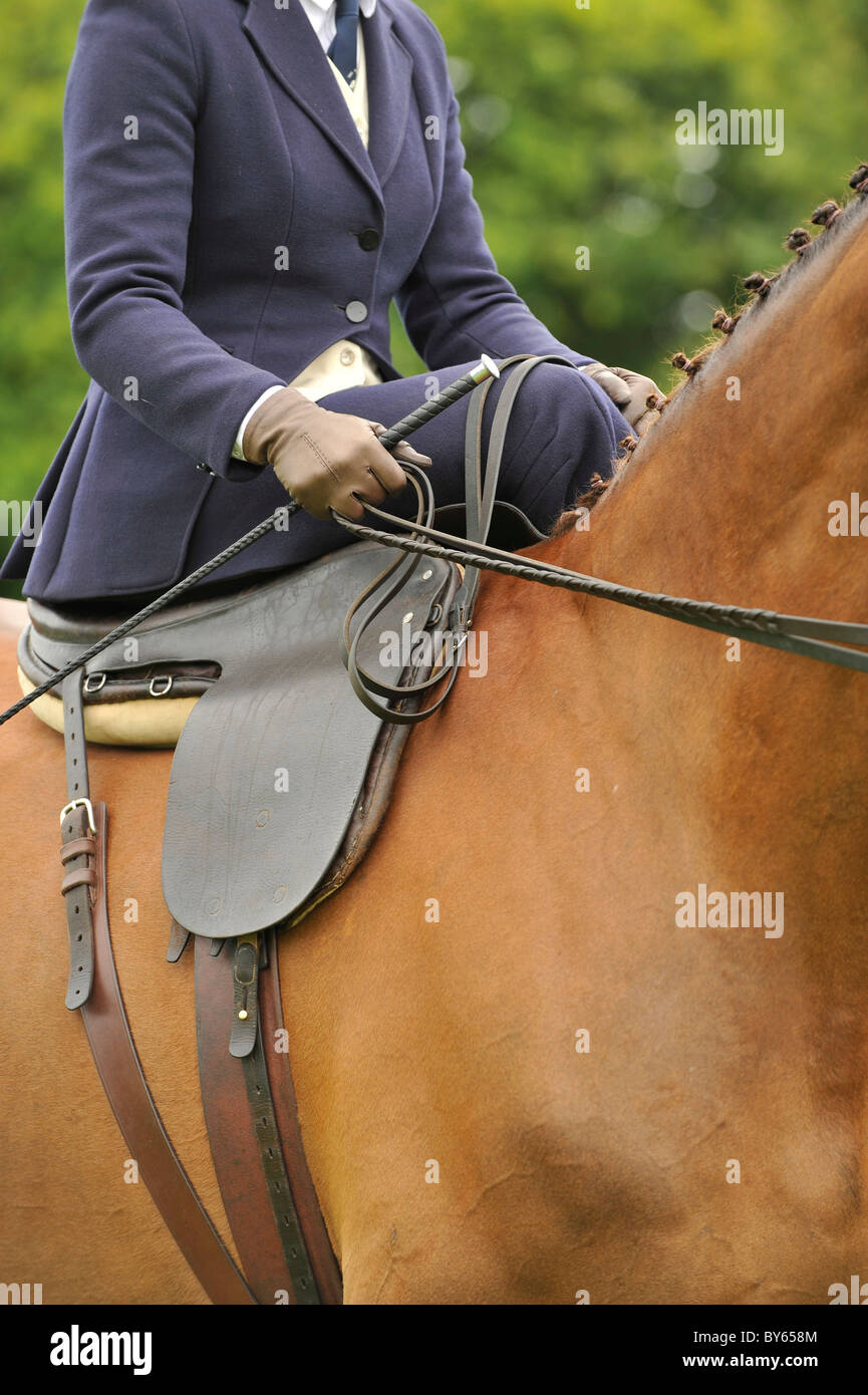 Sidesaddle Reiter auf einem Pferd Stockbild