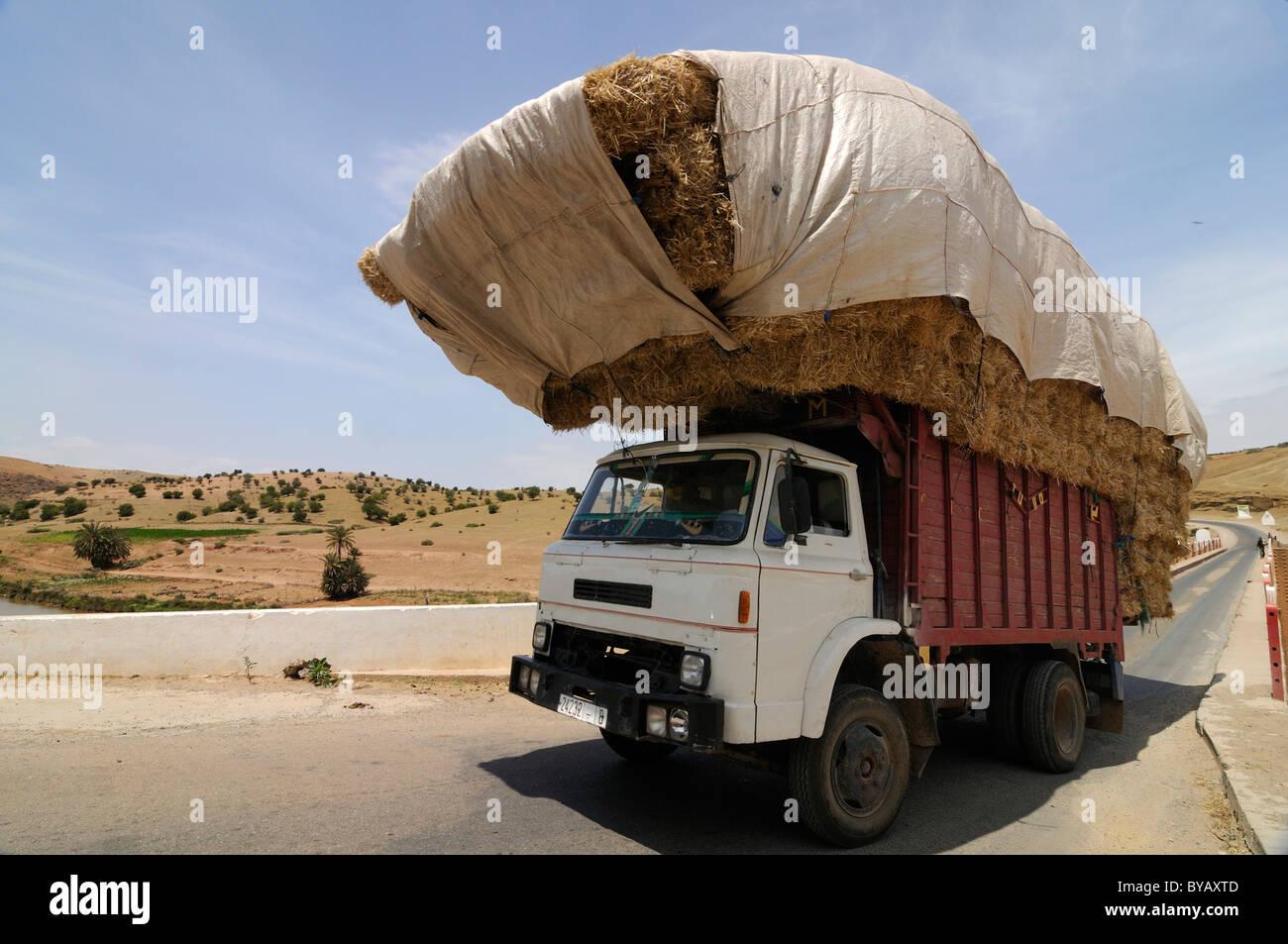 lkw beladen mit stroh in der w ste in der n he von boulaouane marokko afrika stockfoto bild. Black Bedroom Furniture Sets. Home Design Ideas