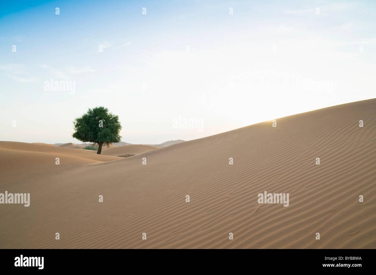 RUB' al Khali Wüste an der Grenze zwischen Oman und im Emirat Dubai, Mittlerer Osten, Südwestasien Stockbild