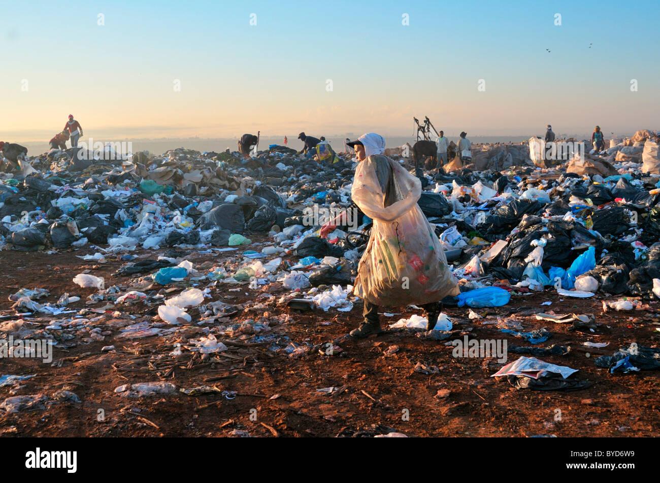 Junge Frau lebt von der Suche nach Wertstoffen auf der Lixao Müllkippe in der Satelliten-Stadt Estrutural in Stockbild