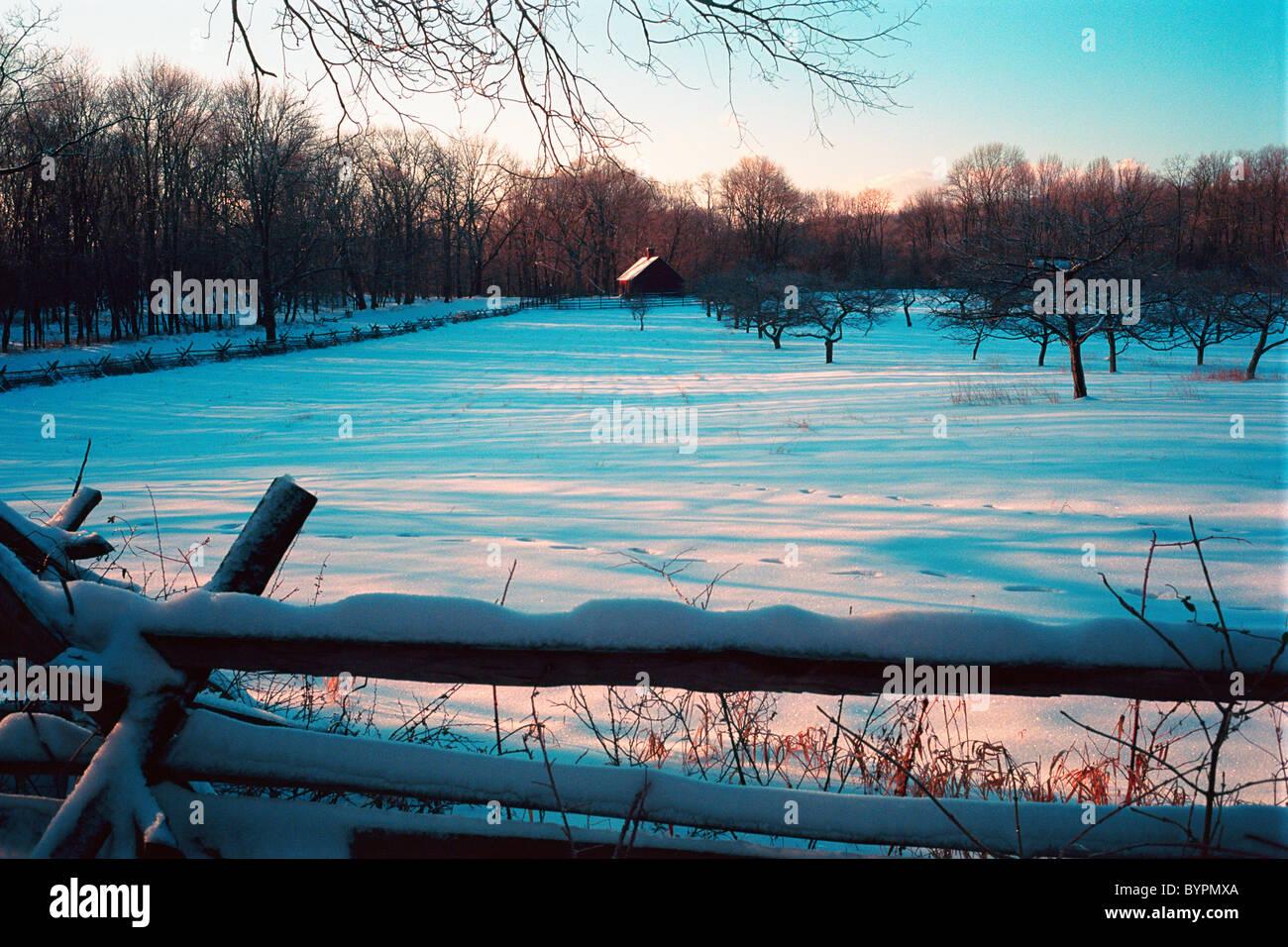 Schneebedeckte, Obstgarten, historische Dochte Farm, Jockey Hollow State Park, New Jersey Stockbild