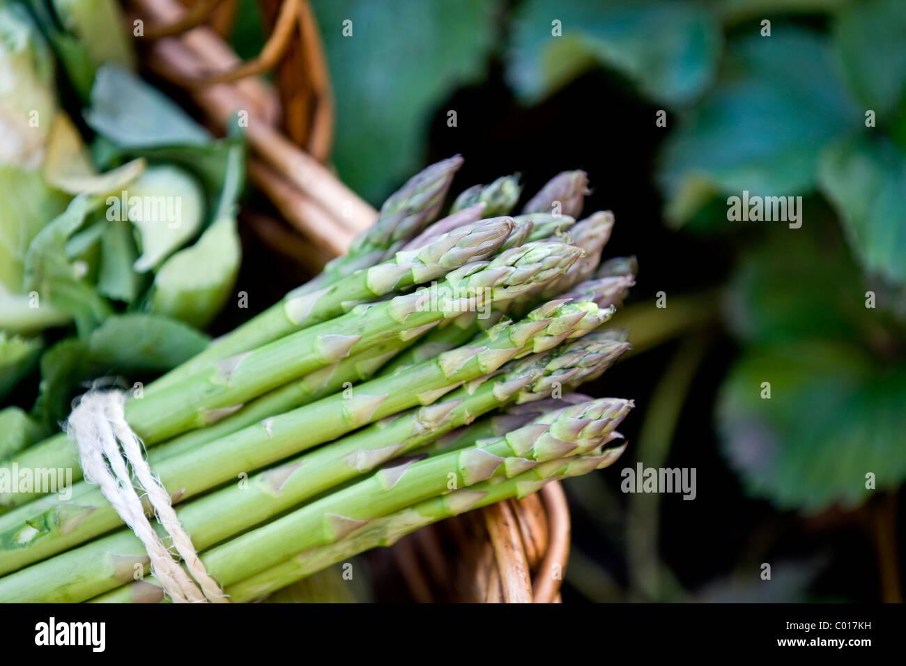 Eine Reihe von Spargel in einen Korb mit frischem Gemüse Stockbild