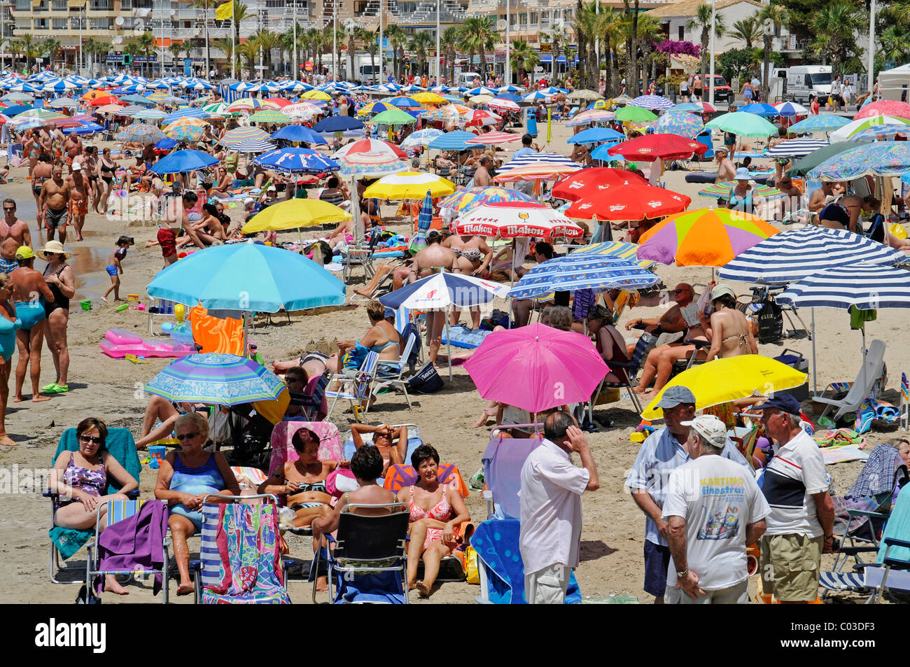 Urlauber, bunte Sonnenschirme, Playa de Levante Strand, Benidorm, Costa Blanca, Alicante, Spanien, Europa Stockbild