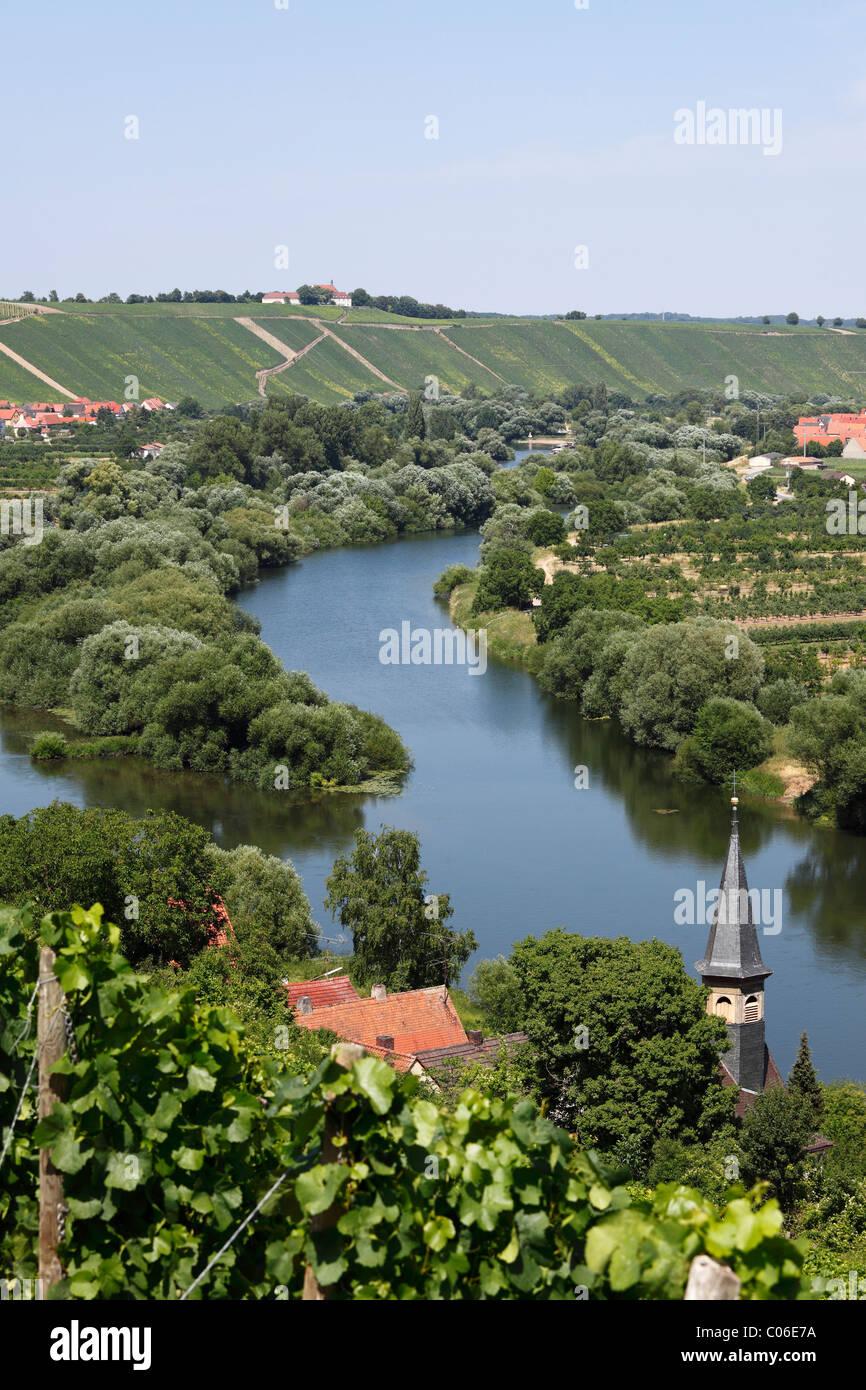 Old Main River mit den Städten Koehler, Escherndorf und Nordheim bin Main, Mainschleife, Schleife in den Main, Stockbild