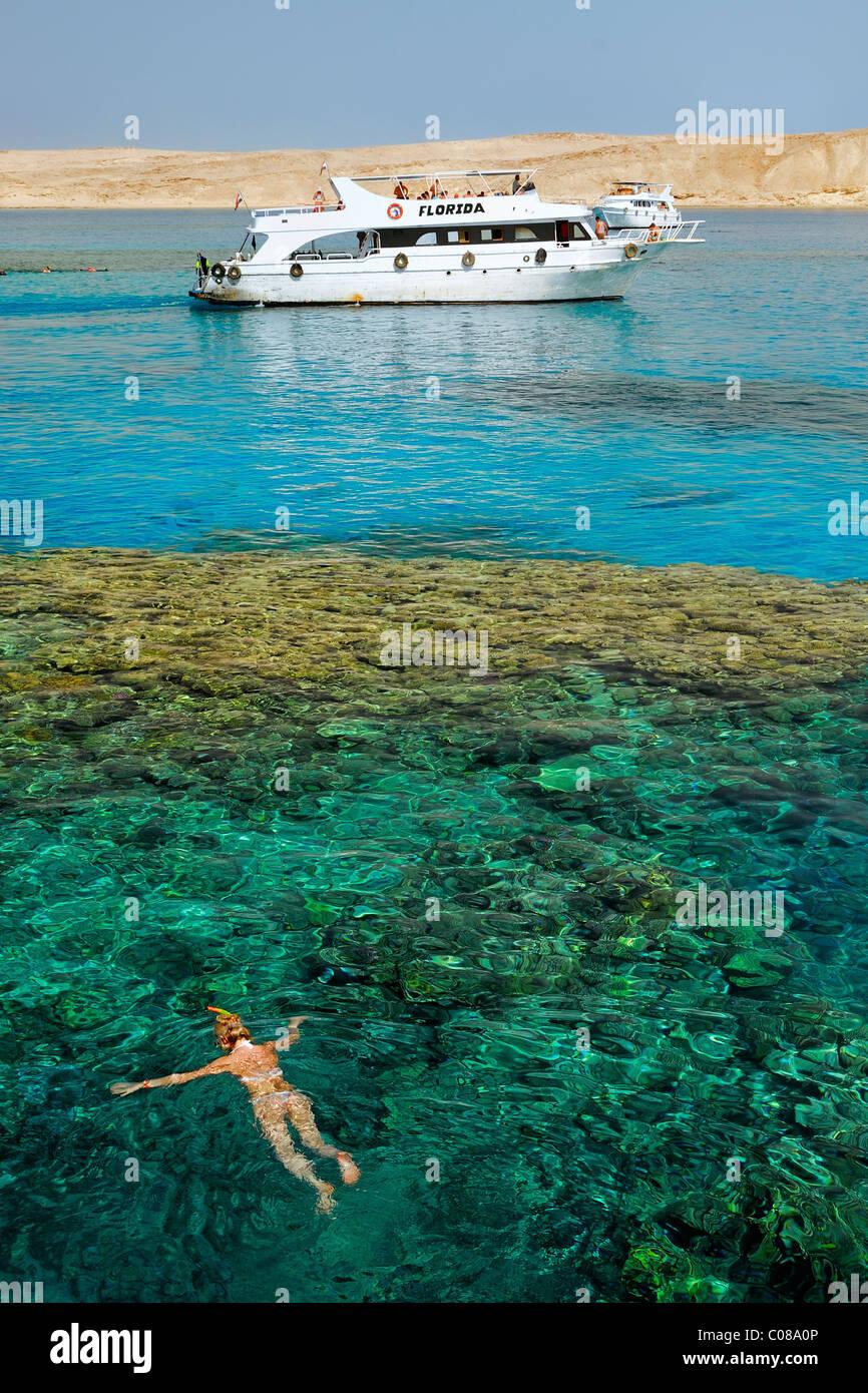 Schnorcheln und Tauchen in der Nähe von Tiran Insel, nördlich von Sharm El Sheikh, Sinai-Halbinsel, Rotes Stockbild