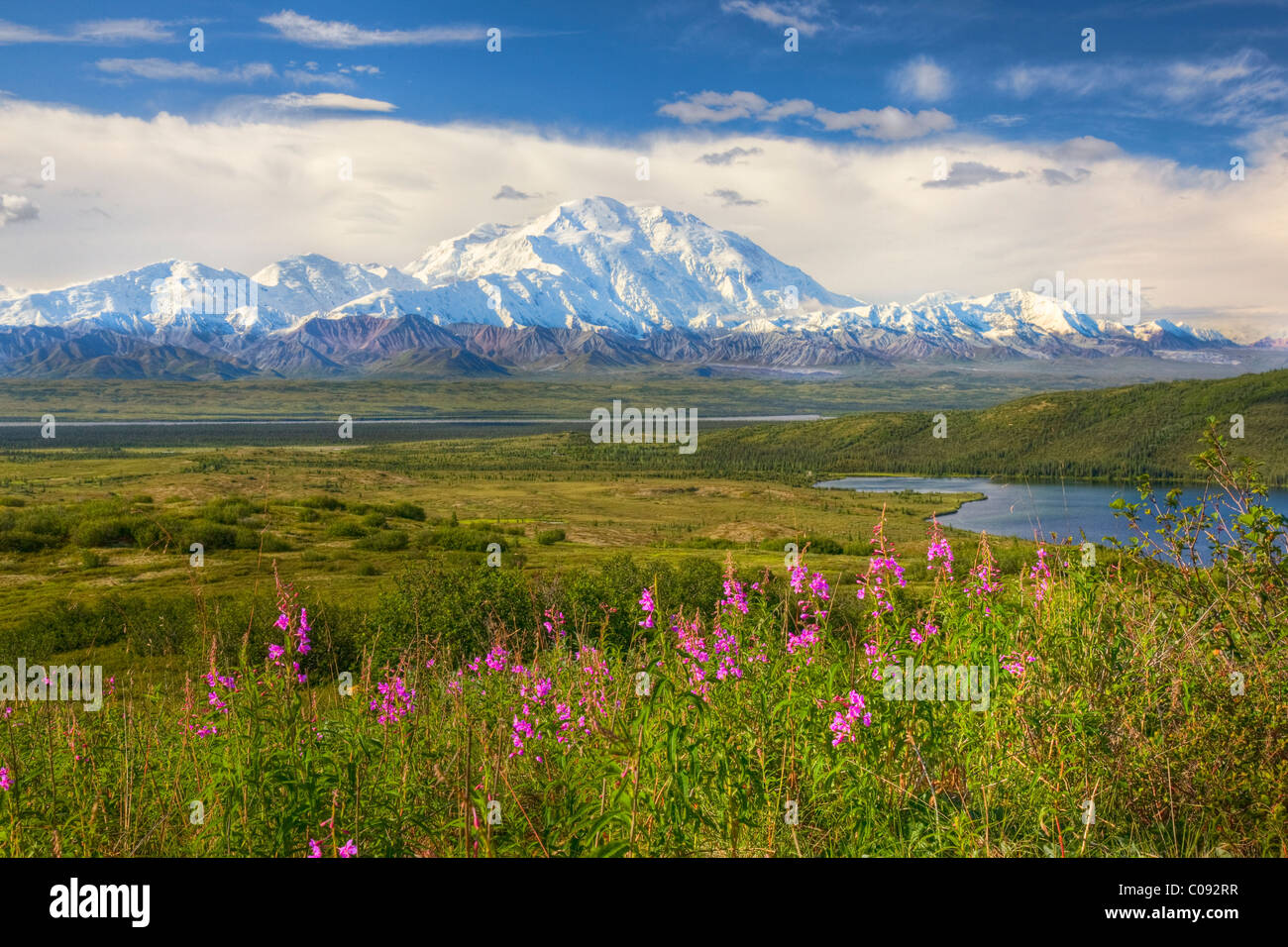 Blick auf Mt. McKinley an einem sonnigen Tag mit McKinley River und Wonder Lake im Vordergrund, Denali National Stockbild