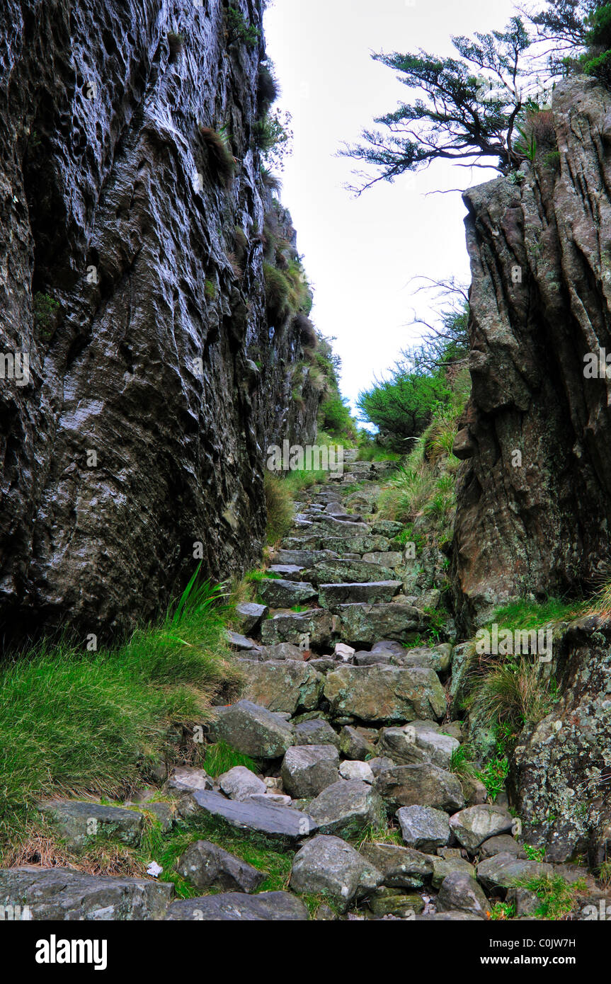 Wanderweg Durch Platteklip Schlucht Table Mountain National Park Plasttekpp Kapstadt Sdafrika