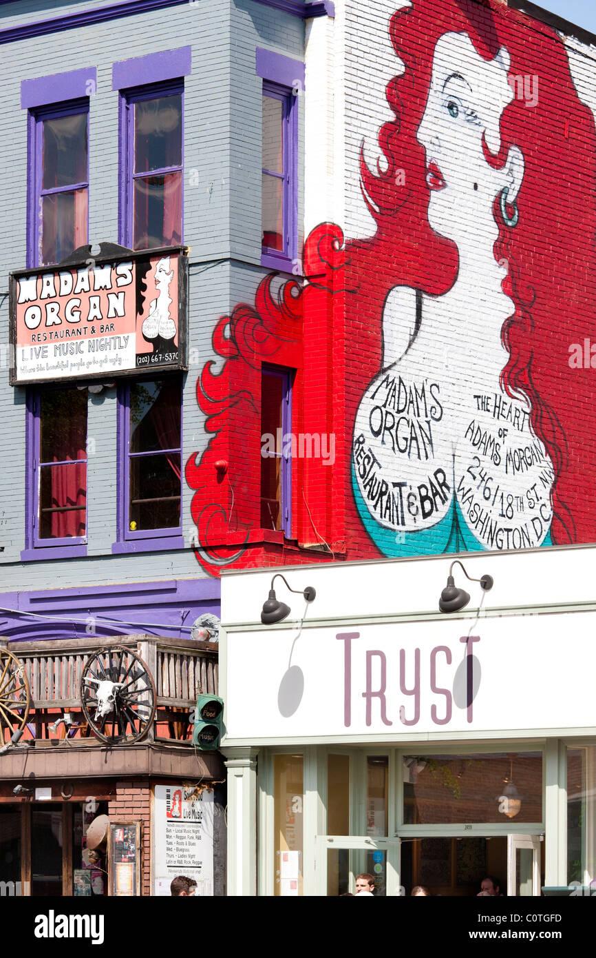 Landmark Wandbild des Vereins Frau Orgel am 18. Street NW in Adams Morgan in Washington D.C. Neben Tryst Restaurant. Stockbild