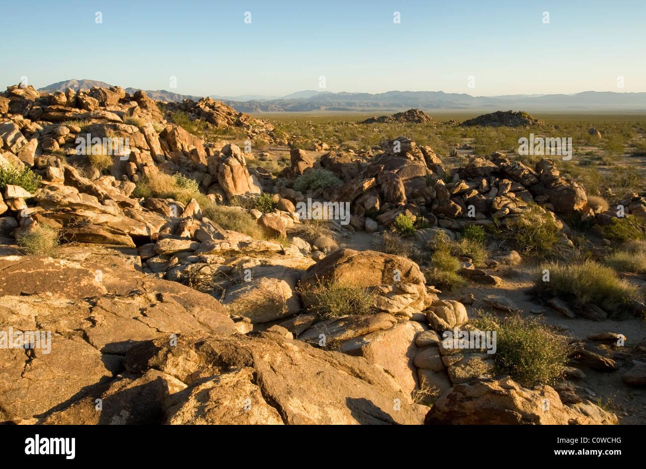 Mojave-Wüste in Kalifornien Stockbild