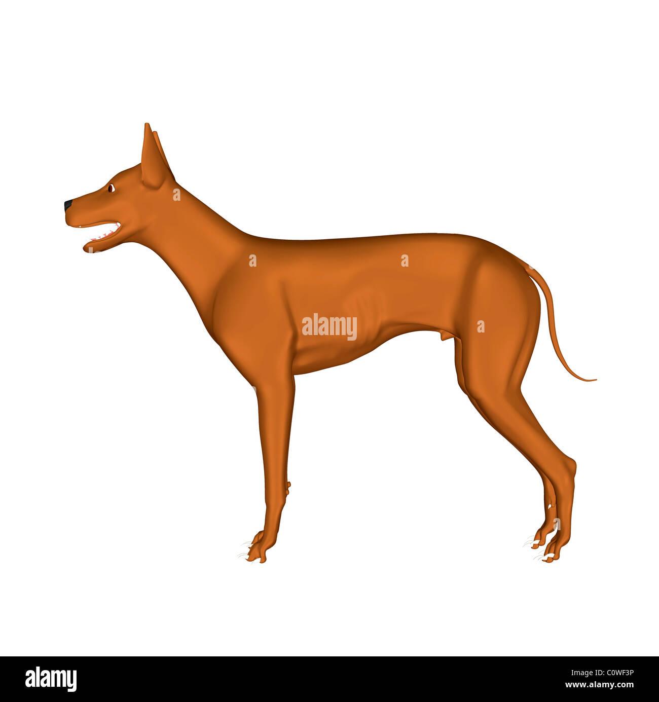 Hund-Abbildung Stockbild