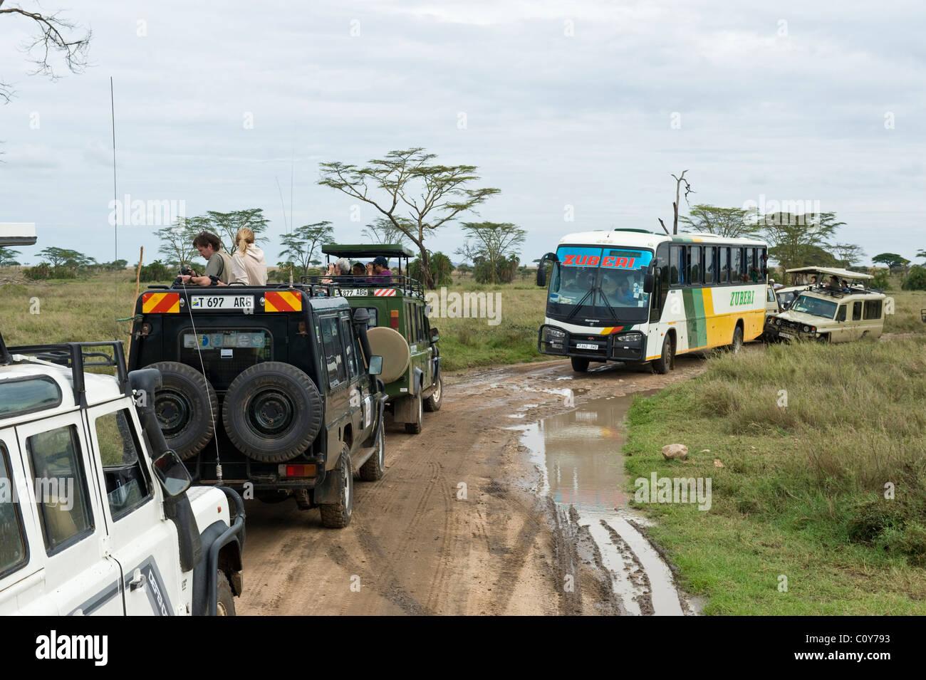 Stau verursacht durch Besucher, die gerade eines Leoparden in Seronera Serengeti Tansania Stockfoto