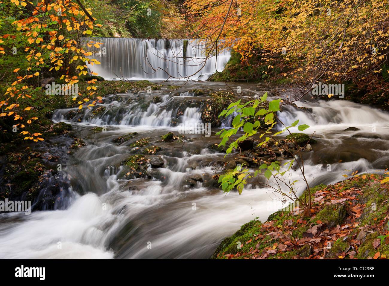 Stockghyll Kraft im Herbst Ambleside Cumbria UK Stockfoto