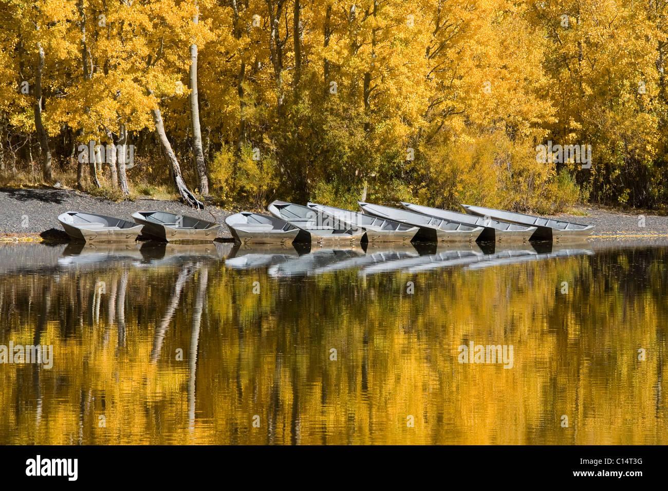 Eine Reihe von Fischerbooten und Herbst Espen Bäumen reflektiert in Silver Lake in der Sierra Mountains, Kalifornien Stockbild
