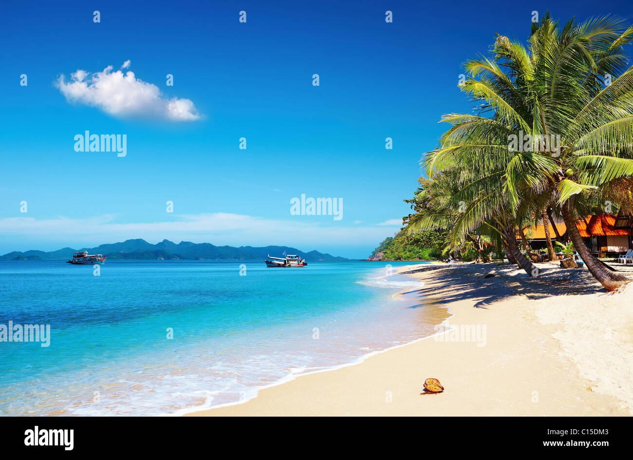 Tropische Strände mit Kokospalmen und Bungalow, Thailand Stockbild