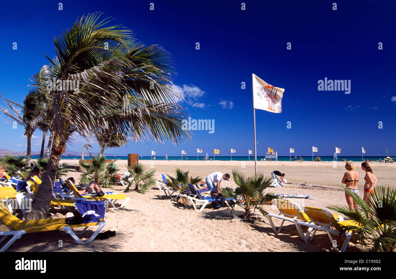 Surfer Strand Playa de Sotavento, Fuerteventura, Kanarische Inseln, Spanien, Europa Stockbild