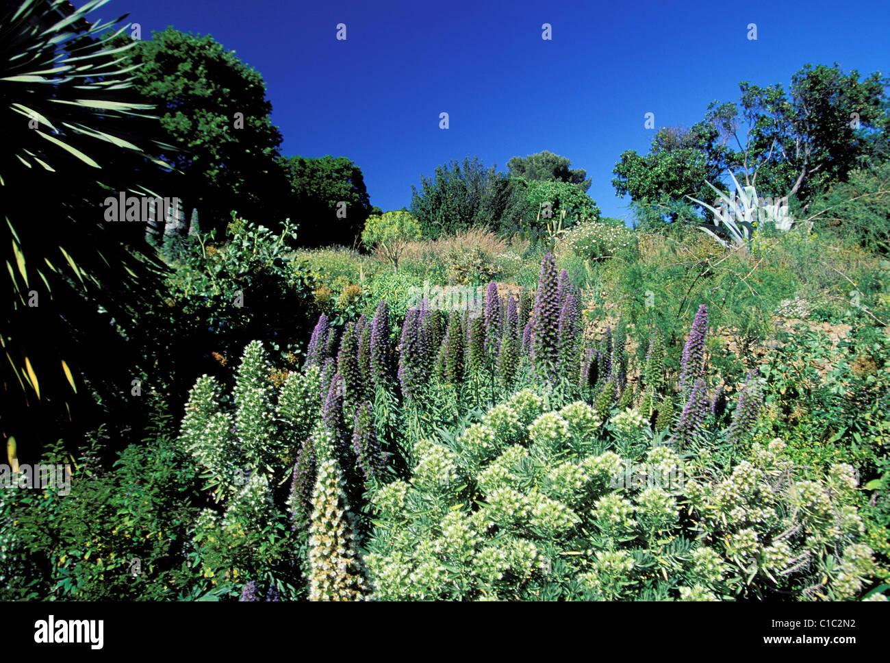 Frankreich Var Le Rayol Canadel Sur Mer Domaine Du Rayol Jardin