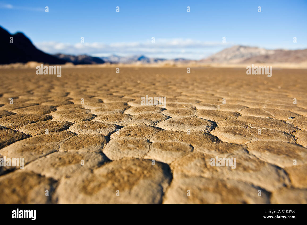 Detail der trockenen Seegrund des Teufels Racetrack Playa, Death Valley Nationalpark, California Stockbild