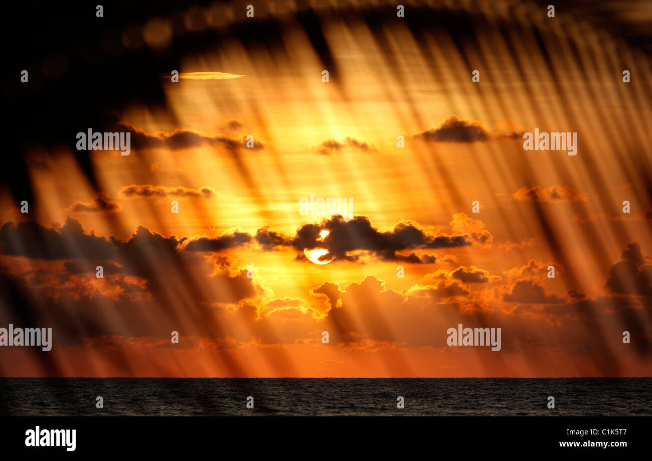 Tropischer Sonnenuntergang gesehen durch einen Palmzweig, Costa Rica Stockbild