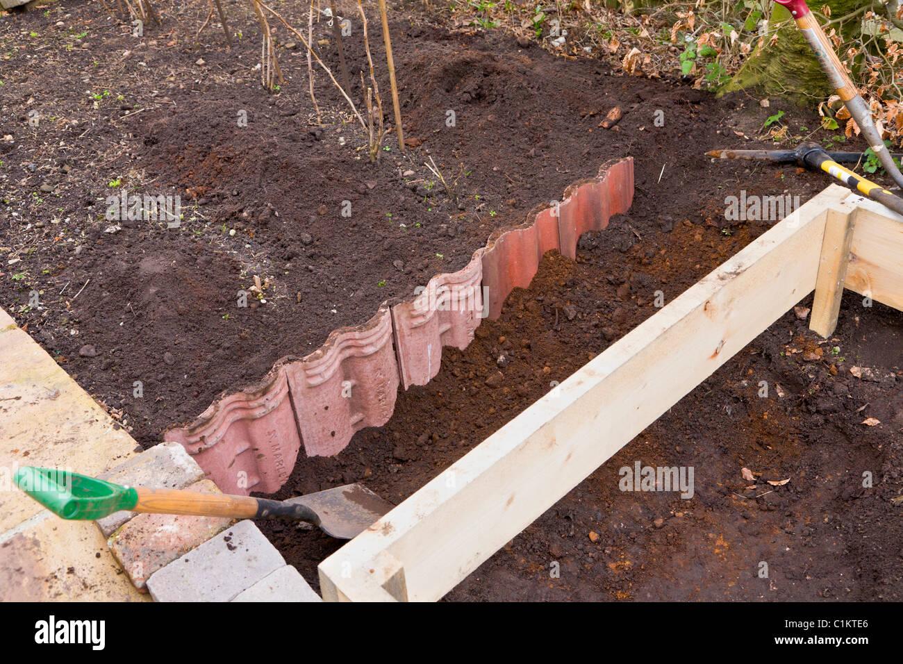 Dachziegel zur Himbeerpflanzen einschränken Stockbild