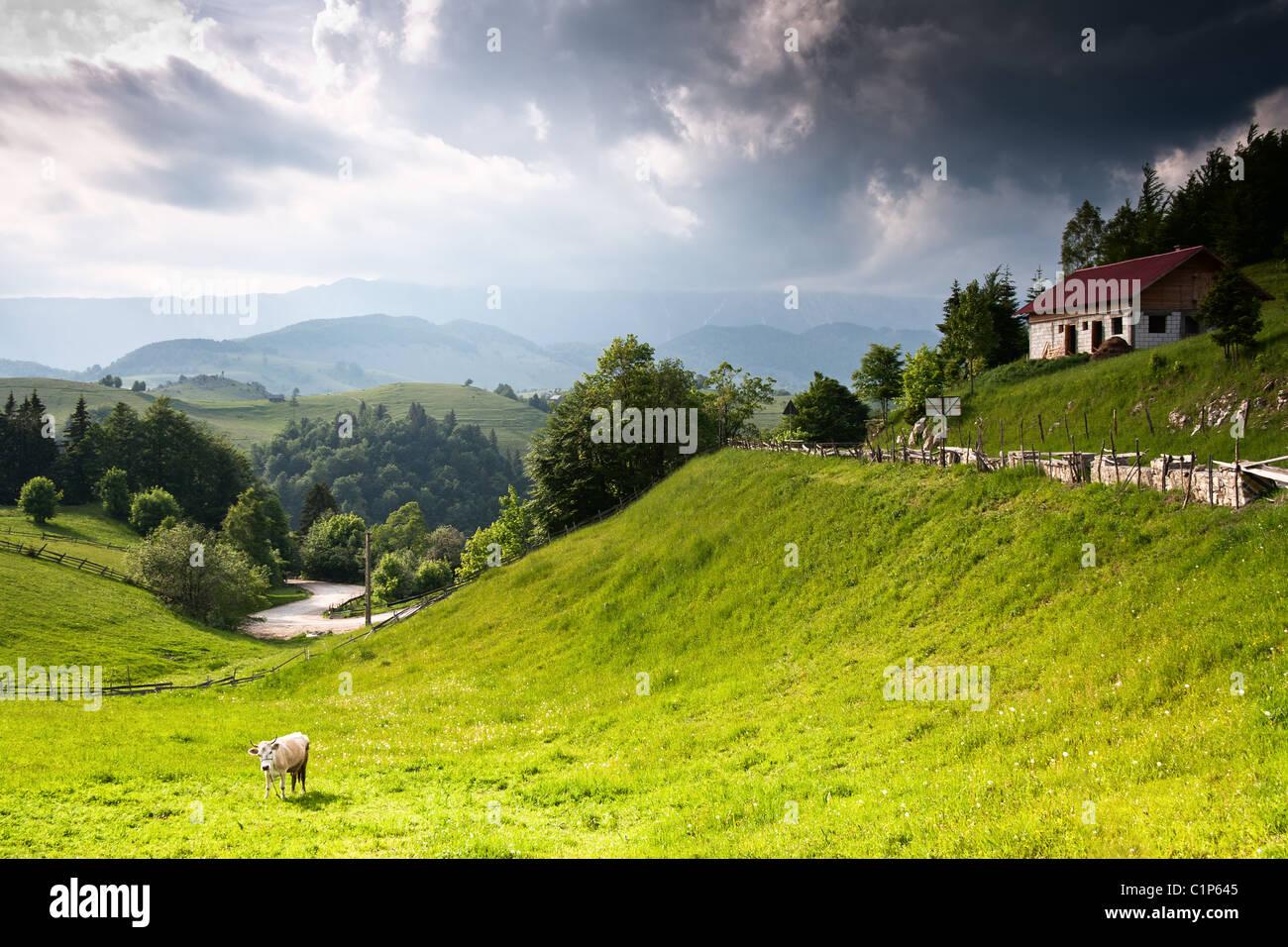 Schöne lebendige und erstaunliche Landschaft von rumänischen Landschaft Stockbild