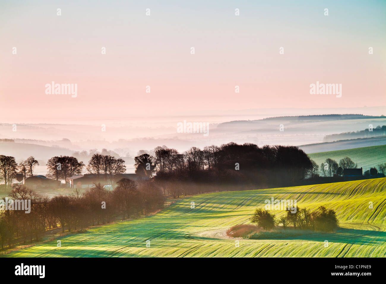 Eine schöne nebligen Sonnenaufgang über die Marlborough Downs in Wiltshire, England, UK Stockbild