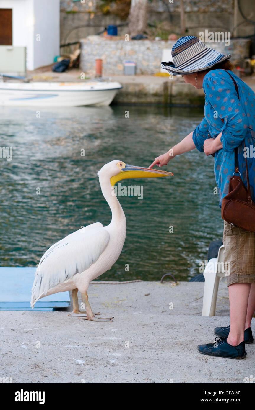 Frau mit einem zahmen Pelikan bei Georgioupolis Kreta Stockbild