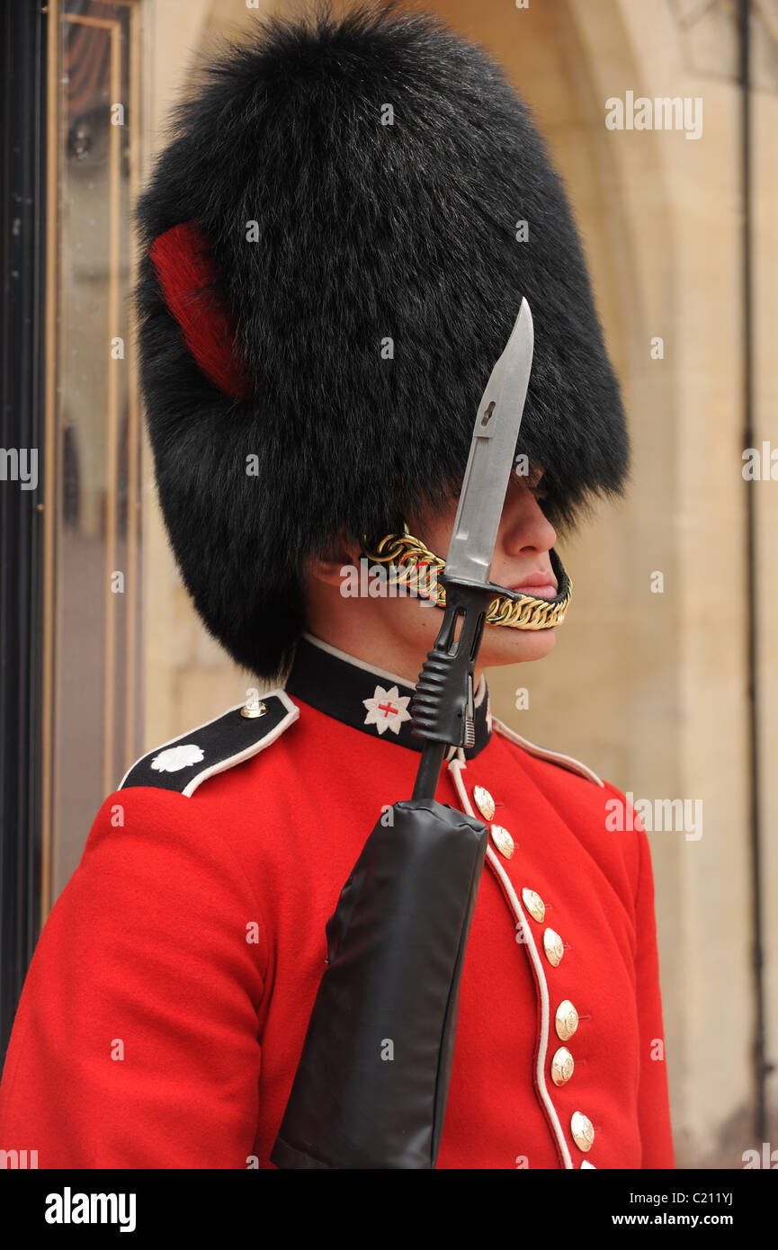 So schlau wie ein Gardist. Coldstream Guard in Windsor castle Stockbild