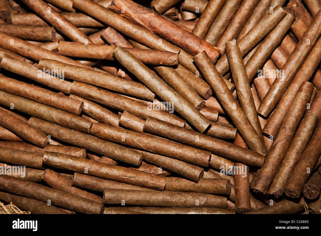 Zigarren hergestellt bereit zum Verpacken von Andorra Stockbild