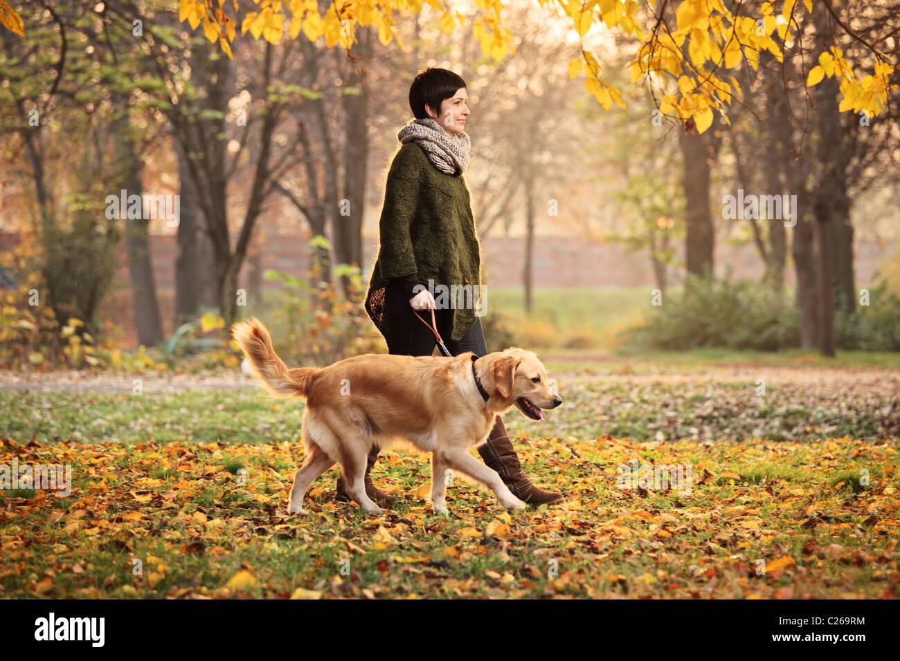 Ein Mädchen und ihr Hund (Labrador Retriever) in einem Park spazieren Stockbild