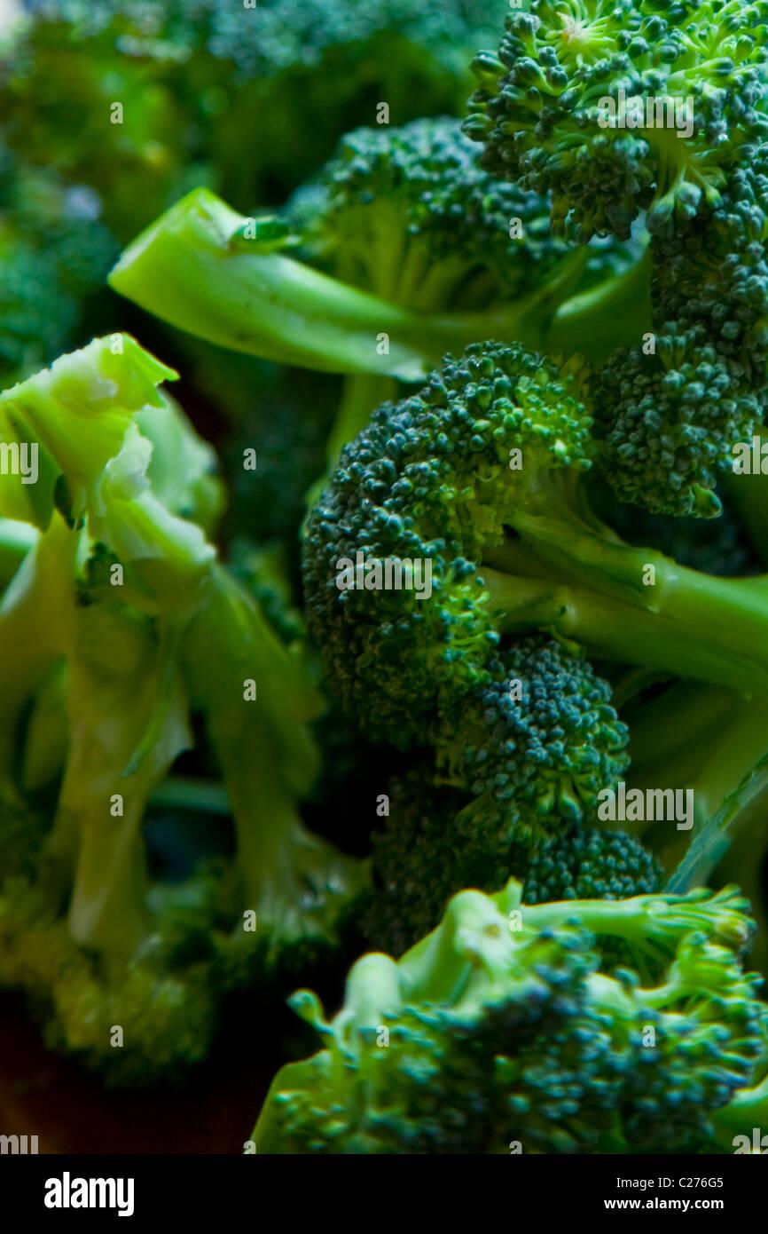 broccoli stockfotos broccoli bilder alamy. Black Bedroom Furniture Sets. Home Design Ideas