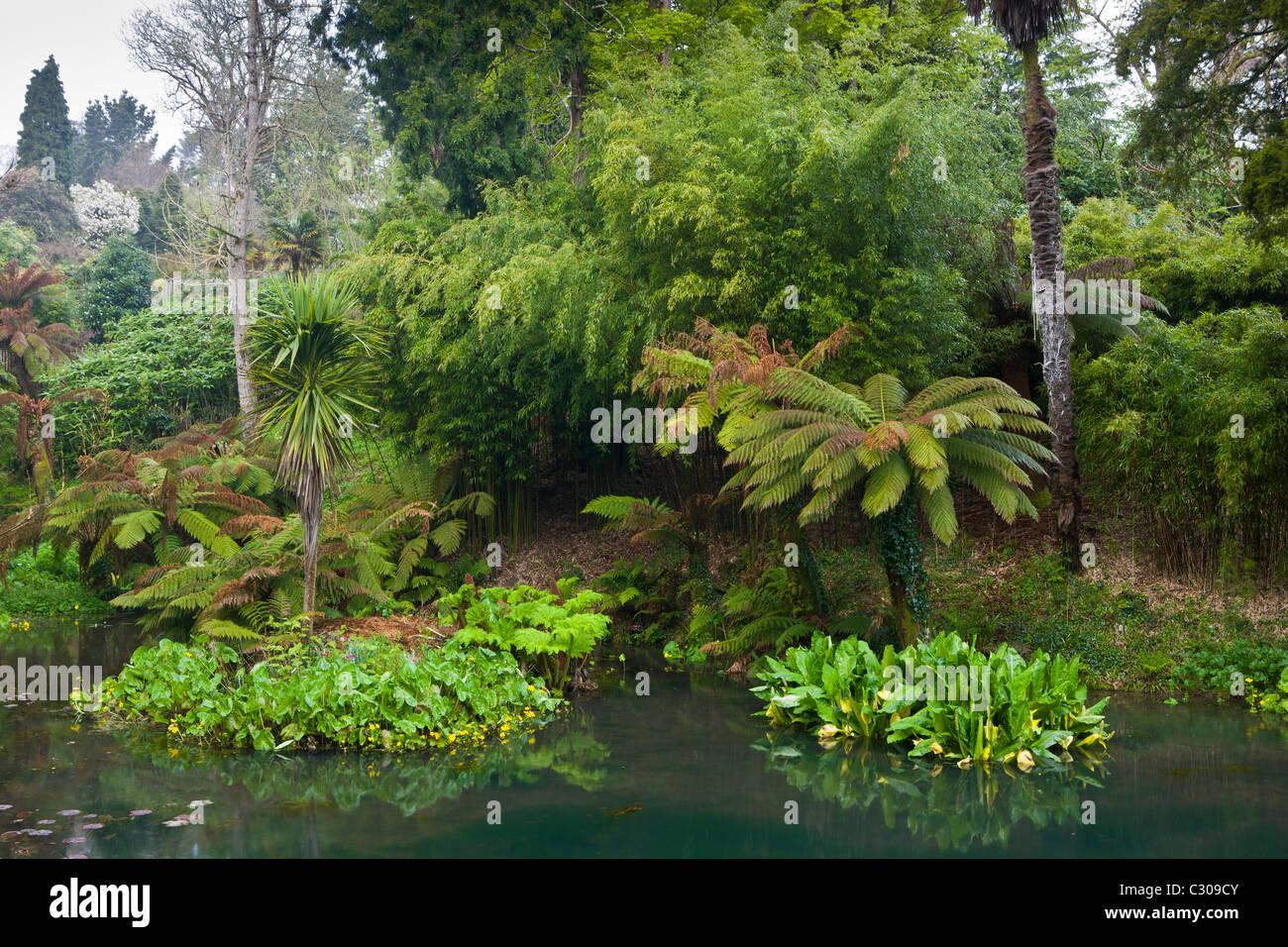 Der tropische Garten mit exotischen Pflanzen an die verlorenen Gärten von Heligan touristische Attraktion, Stockbild