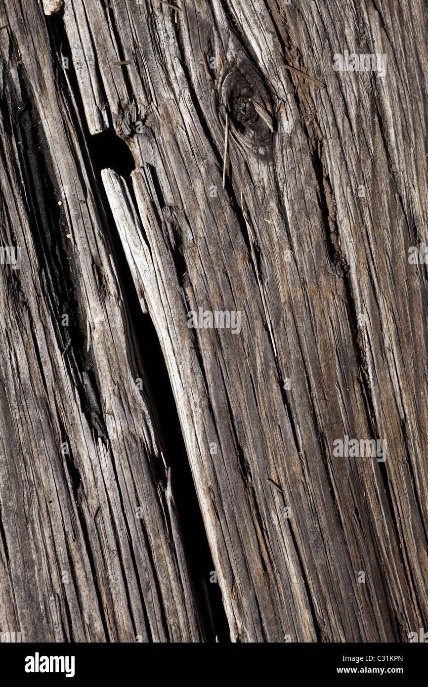 In der Nähe Holz Textur für Hintergrund Stockbild