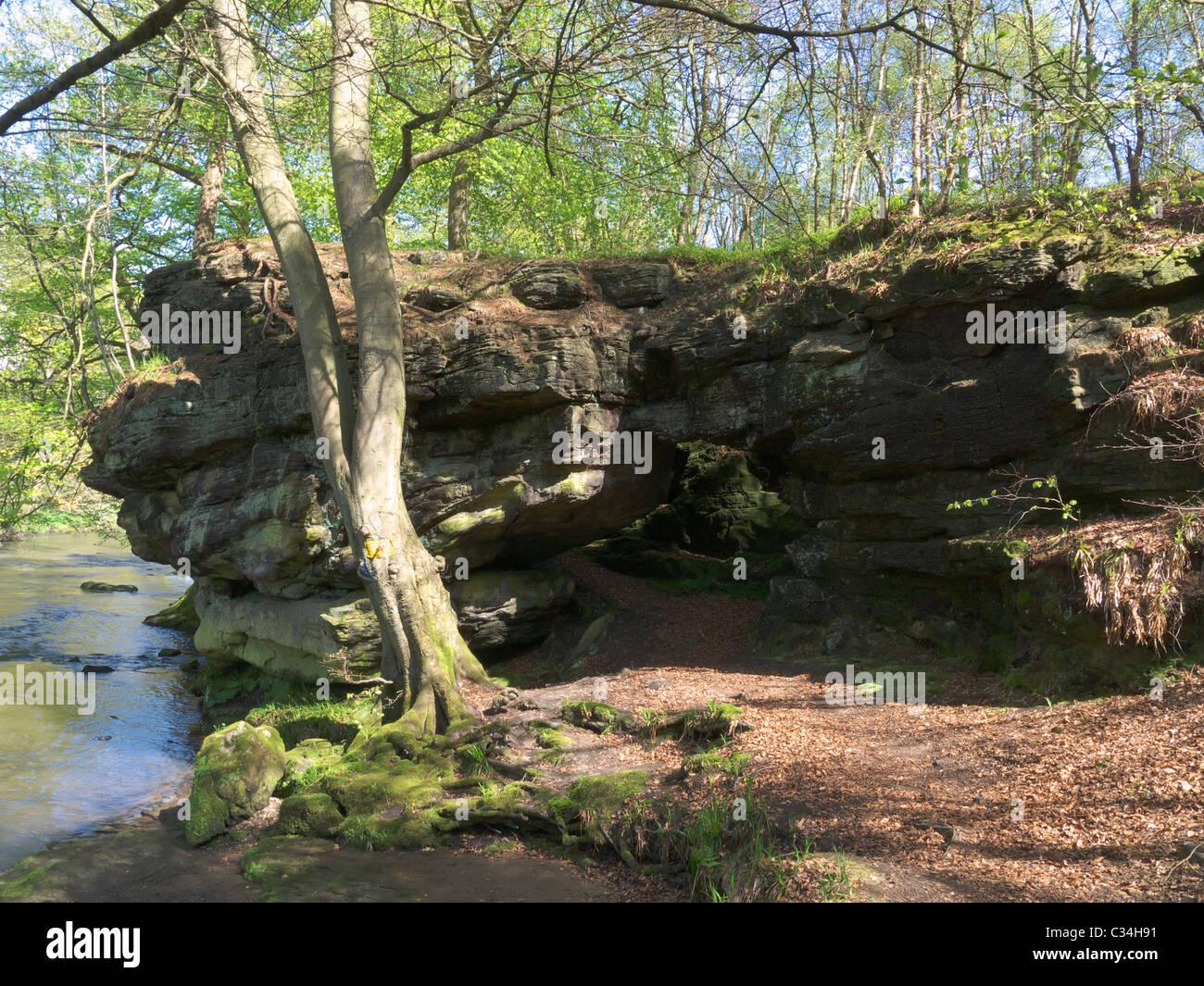 Wallaces Höhle ist eine natürliche geologische Besonderheit auf der West Lothian-Seite des Flusses Avon Stockbild