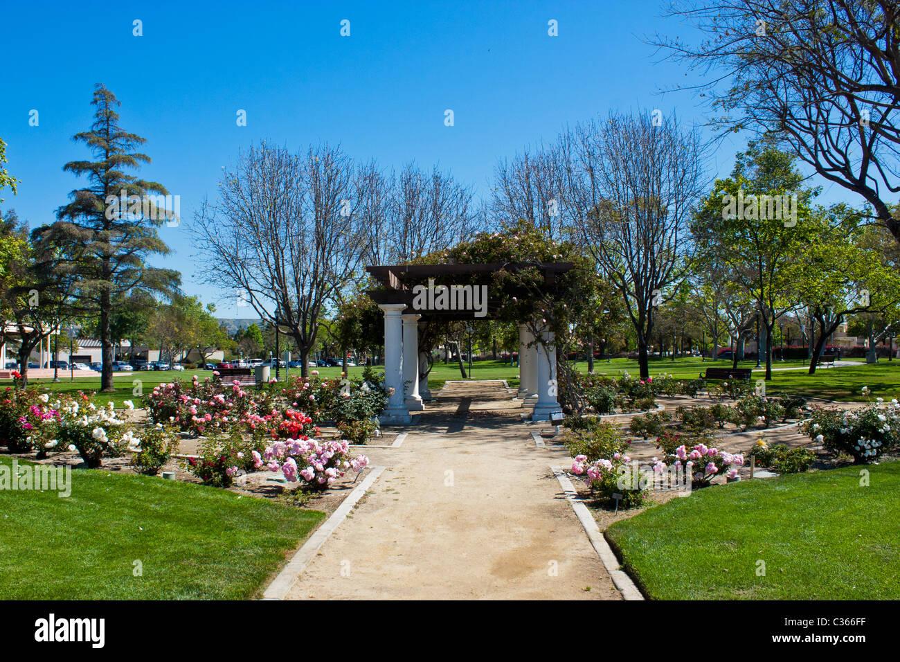 Ein Kleiner Rosengarten Und Arbor In Camarillo Kalifornien City