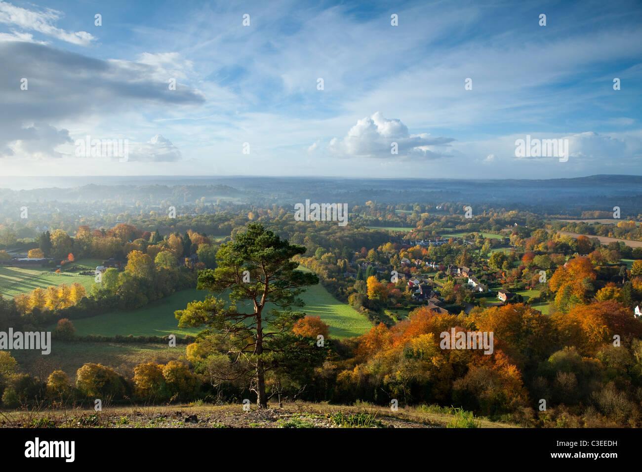 Herbstliche Ansicht Süd aus Reigate Colley Hill The North Downs Surrey England Stockbild