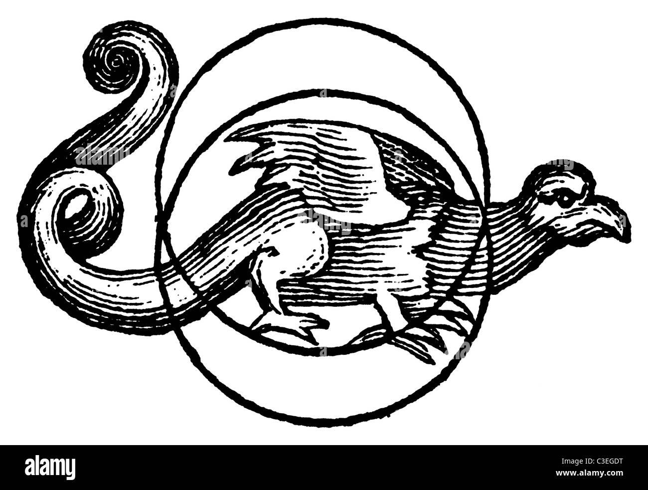 Dragon von der Mond-Talisman - Vintage religiöse/okkulten Holzschnitt von 1801 Stockbild