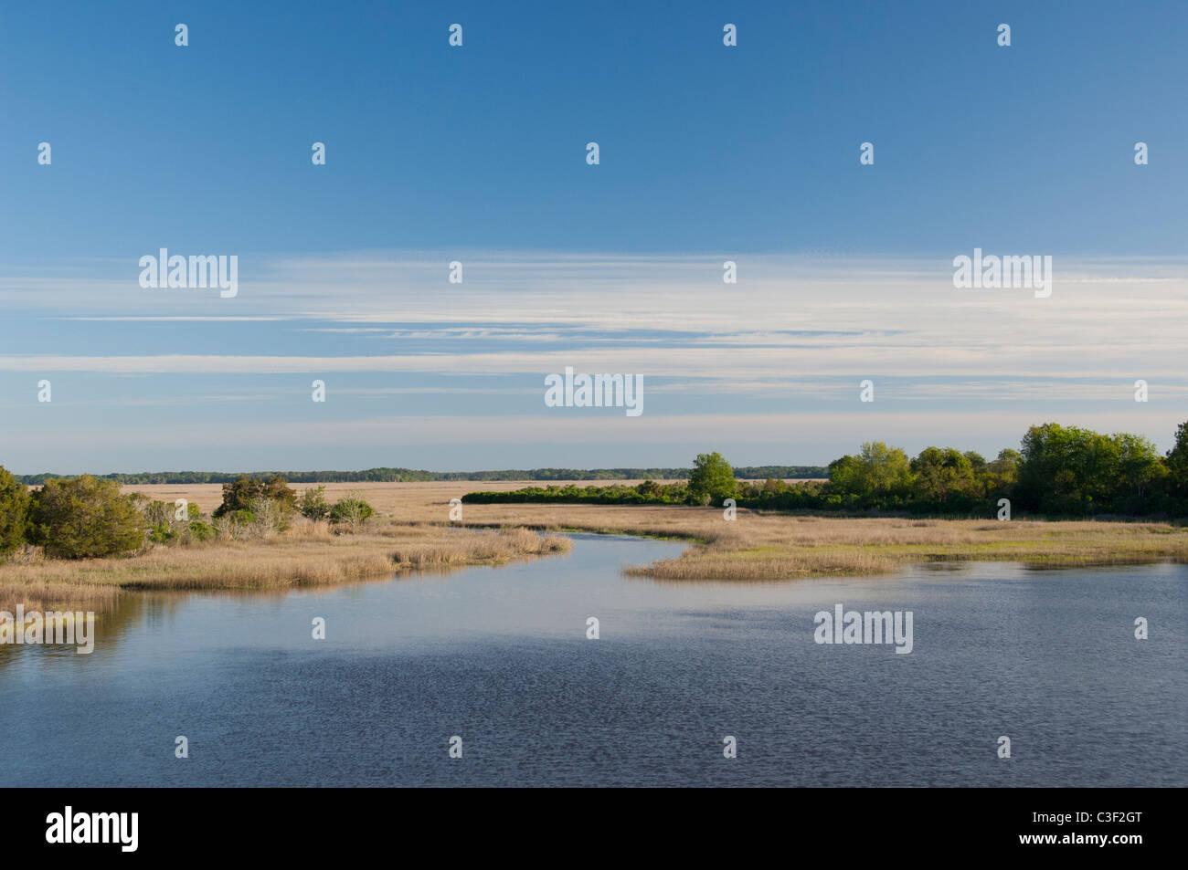 South Carolina. Marsh & Feuchtgebiet Lebensraum in Atlantic Intracoastal Wasser-Strasse zwischen Beaufort & Stockbild