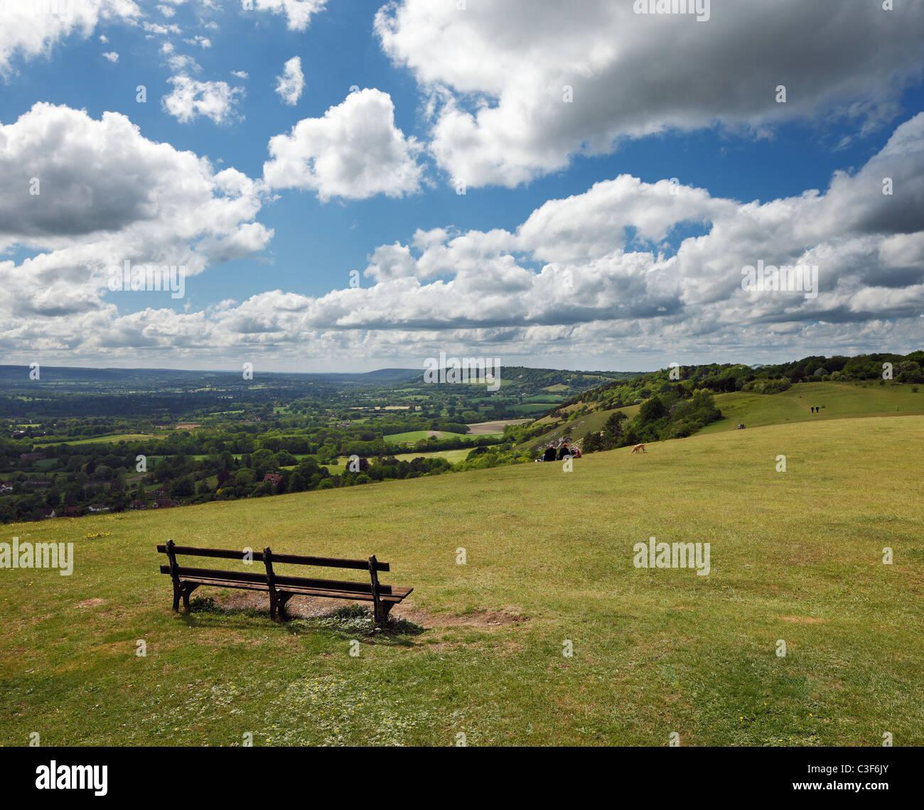 Reigate Hill, North Downs. Stockbild