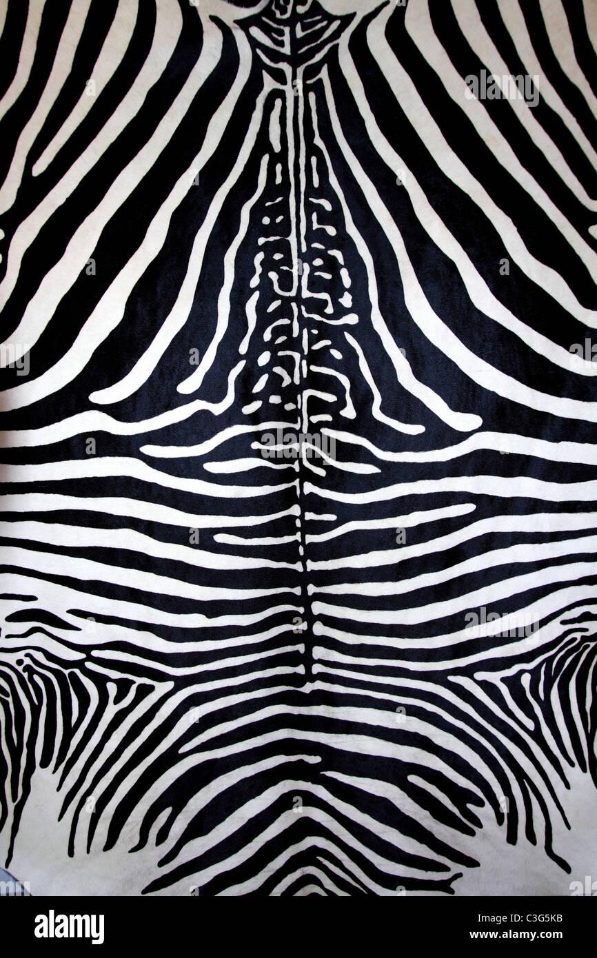 tierische Zebrafell schwarzen und weißen Fell Streifen Leder Hintergrund Stockfoto